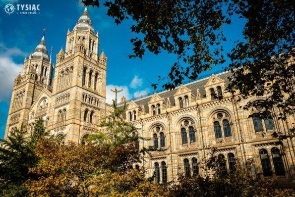 Londyn muzeum