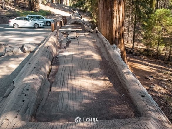 Park Narodowy Sekwoi - Auto Log