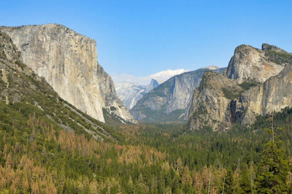 Born Globals - Park Narodowy Yosemite