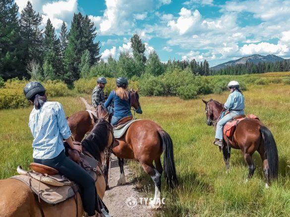Jazda konna w Grand Teton