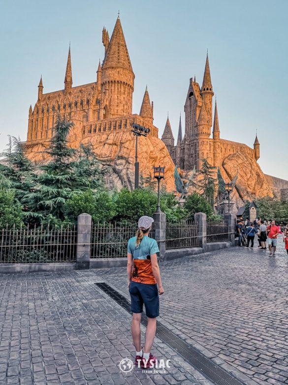 Dziecięce marzenia - Harry Potter