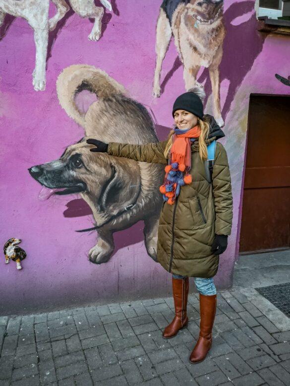 Atrakcje Wrocławia - kolorowe podwórko