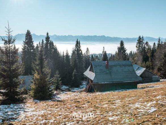 Tatry - widok z Gorców