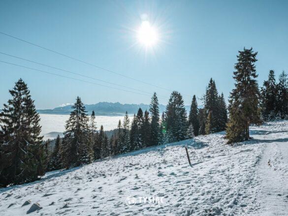 Zielony szlak - widok z Wisielakówki