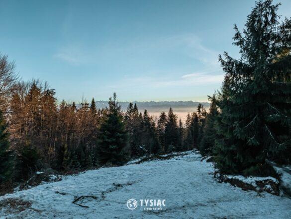 Żółty szlak na Turbacz - widok