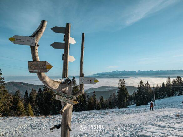 Wisielakówka - widok na Tatry