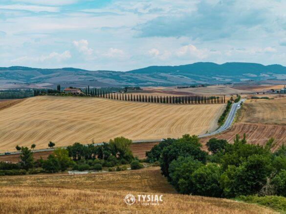 Droga z cyprysami - Toskania